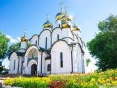 Vista de verão do convento. — Fotografia Stock