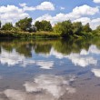 Calm river — Stock Photo