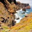 Madeira Ponta do Rosto coast — Stock Photo