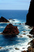 Madeira Ponta do Rosto — Photo