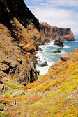 Madeira Ponta do Rosto coast — Photo