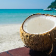 Stock Photo: Coconut on a beach