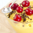 Vanilla pudding with cherry in a bowl — Stock Photo
