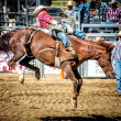 Rodeo — Stock Photo #32866301