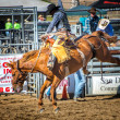 Rodeo — Stock Photo #33472643