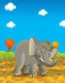 Cartoon safari - illustration for the children — Stock Photo