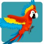 Cute macaw cartoon flying — Stock Photo