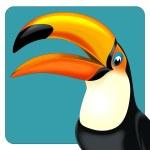 Cartoon toucan — Stock Photo