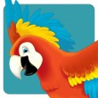 Cute macaw cartoon flying — Stock Photo