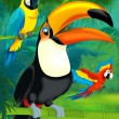 Cartoon toucan — Foto de Stock
