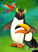 Cartoon tropical. penguin and parrots — Stock Photo
