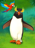 Cartoon tropical. penguin and parrot — Stock Photo