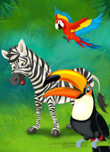 Cartoon tropical or safari. zebra and parrots — Stock Photo