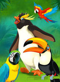 Cartoon tropical. penguin and parrots — Stock Photo