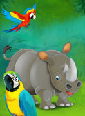 Cartoon tropical or safari. Rhino and parrots — Stock Photo