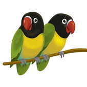 The cartoon bird - two parrots — Stock Photo
