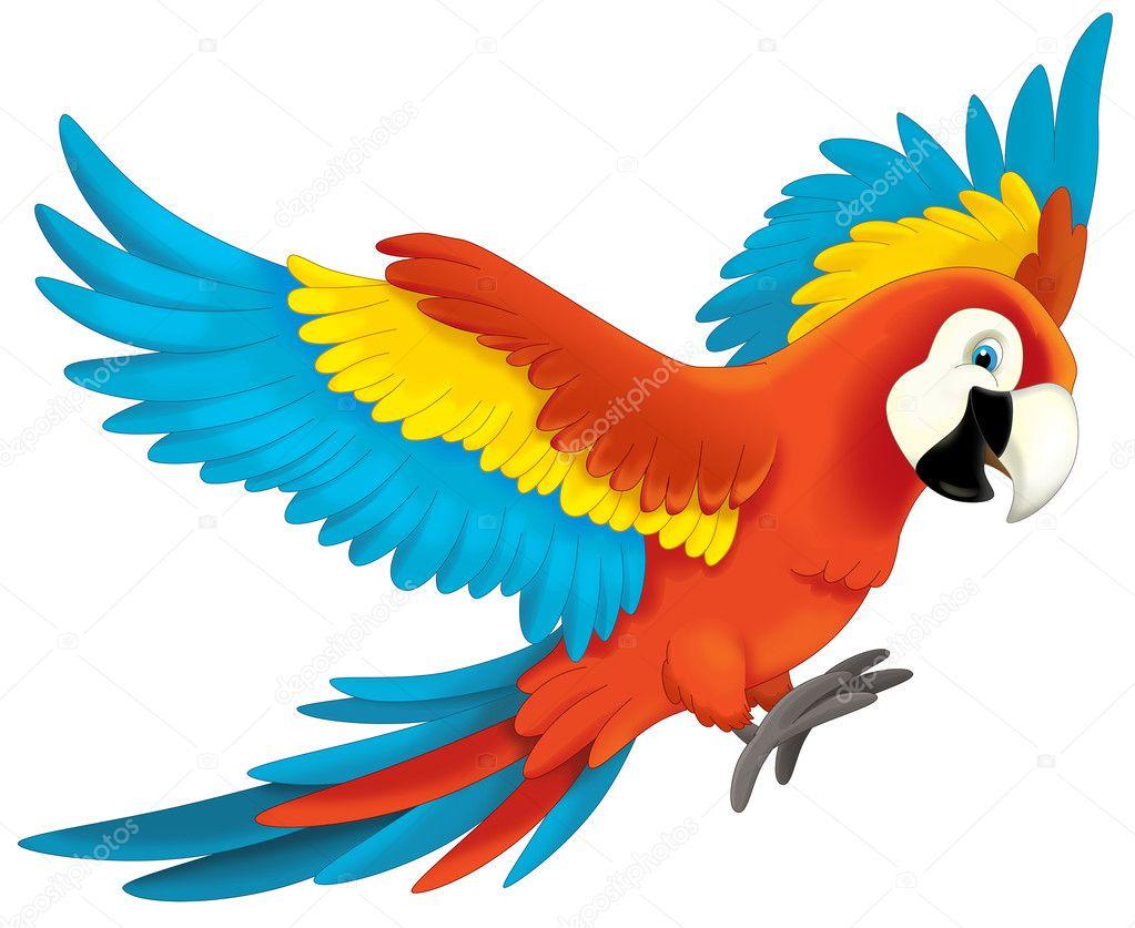Rainforest Birds Flying Dessin animé jung...