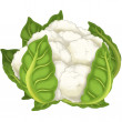 Stock Photo: Cauliflower.