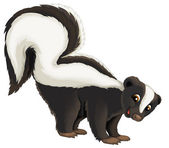 Cartoon skunk — Stock Photo
