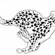 Cheetah — Stock Photo #39022041