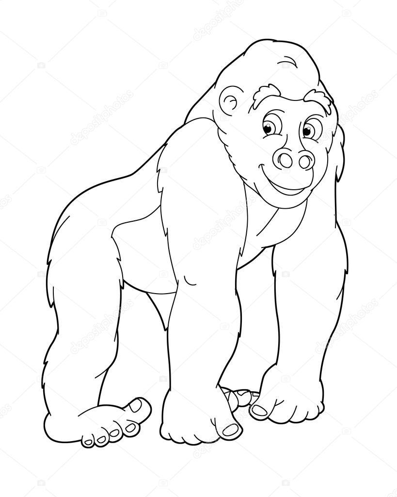 orangotango fotografias de stock 169 agaes8080 39021985