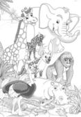Safari animals — Stock Photo
