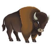 Cartoon buffalo bull — Stock Photo