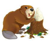 Cartoon beaver — Stock Photo