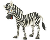 Zebra — Stok fotoğraf