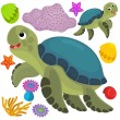 Sea turtle and animals — Stock Photo