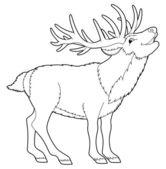 Cartoon animal - wild deer — Foto Stock