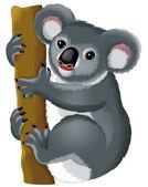 Koala bear  illustration — Stock Photo