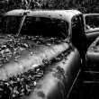 Black and white image of a rusty, abandoned car covered in falle — Stock Photo