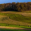 Farm fields and rolling hills of Southern York County, Pennsylva — Foto Stock