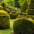 Stock Photo: Topiary garden at Longwood Gardens, PA.