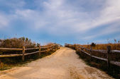 Path over sand dunes to the beach, Cape May, New Jersey. — Stock Photo