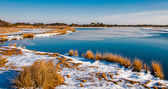Snow covered marsh at Assateague Island National Seashore, Maryl — Foto de Stock