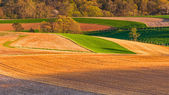 Farm fields and rolling hills of Southern York County, Pennsylva — Stock Photo
