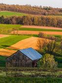 Dolci colline, campi coltivati e un fienile nella contea di york meridionale, — Foto Stock