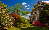 Colorful trees and bushes behind the mansion at Cylburn Arboretu — Stock Photo