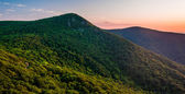 View of Hawksbill Mountain at sunset, from Crescent Rock Overloo — Stock Photo