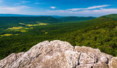 View from a cliff on Big Schloss, in George Washington National — Stock Photo