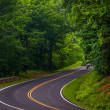 Curve along Skyline Drive in Shenandoah National Park, Virginia. — Stock Photo #27853645