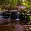 Walking bridge and cascades on Kitchen Creek in Ricketts Glen St — Stock Photo