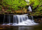 Ozone Falls on Kitchen Creek, in Glen Leigh, Ricketts Glen State — Stock Photo