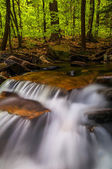 Small cascades along Glen Leigh, Ricketts Glen State Park, Penns — Stock Photo