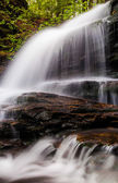 Vertical image of Onondaga Falls, in Glen Leigh at Ricketts Glen — Stock Photo