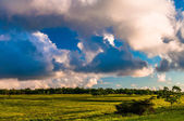 Evening clouds over Big Meadows in Shenandoah National Park, Vir — Stock Photo