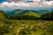 Meadow and view of Old Rag from an overlook on Skyline Drive in — Stock Photo