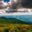 View of the Blue Ridge and Shenandoah Valley from Stony Man Moun — Stock Photo